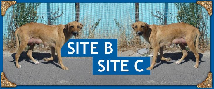 Site B Site C